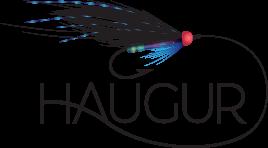 Haugur